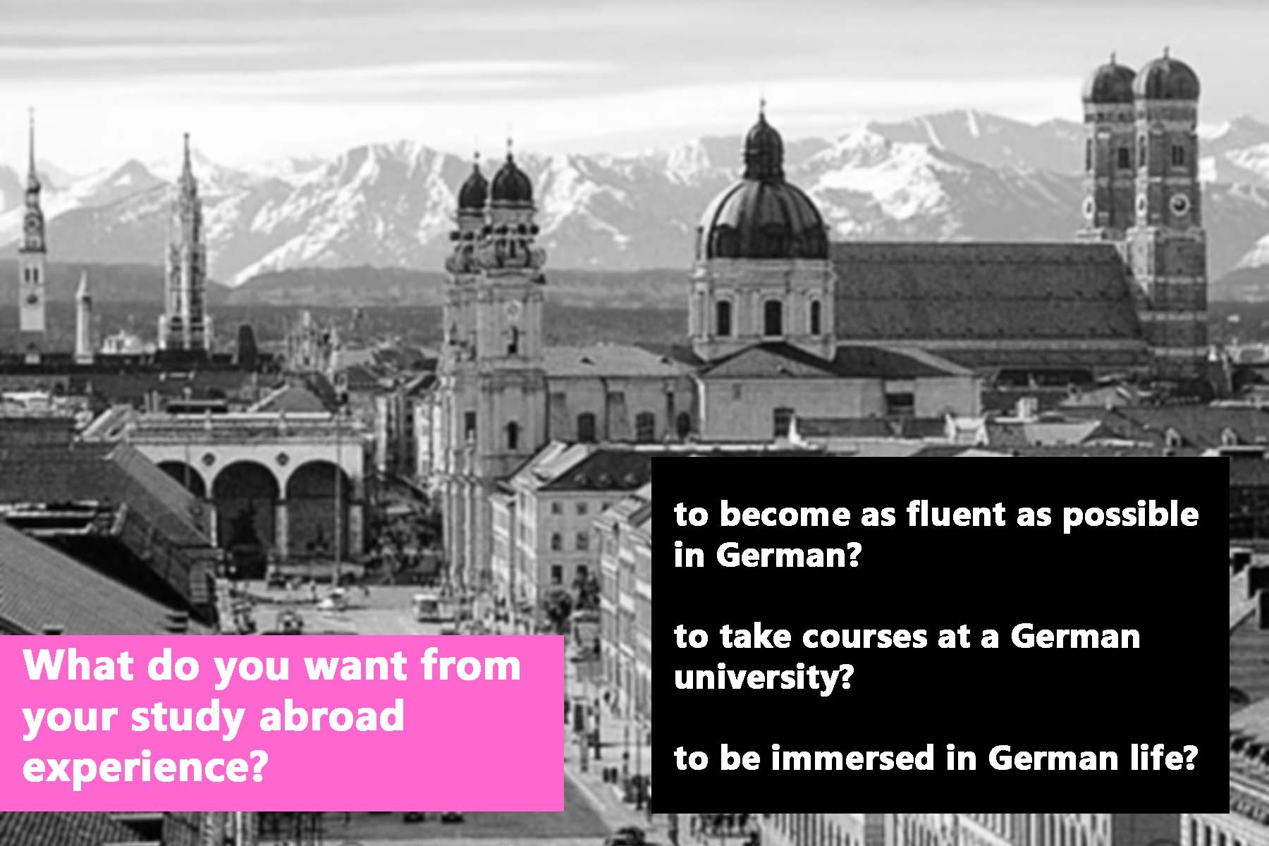 What do you want from your study abroad experience?