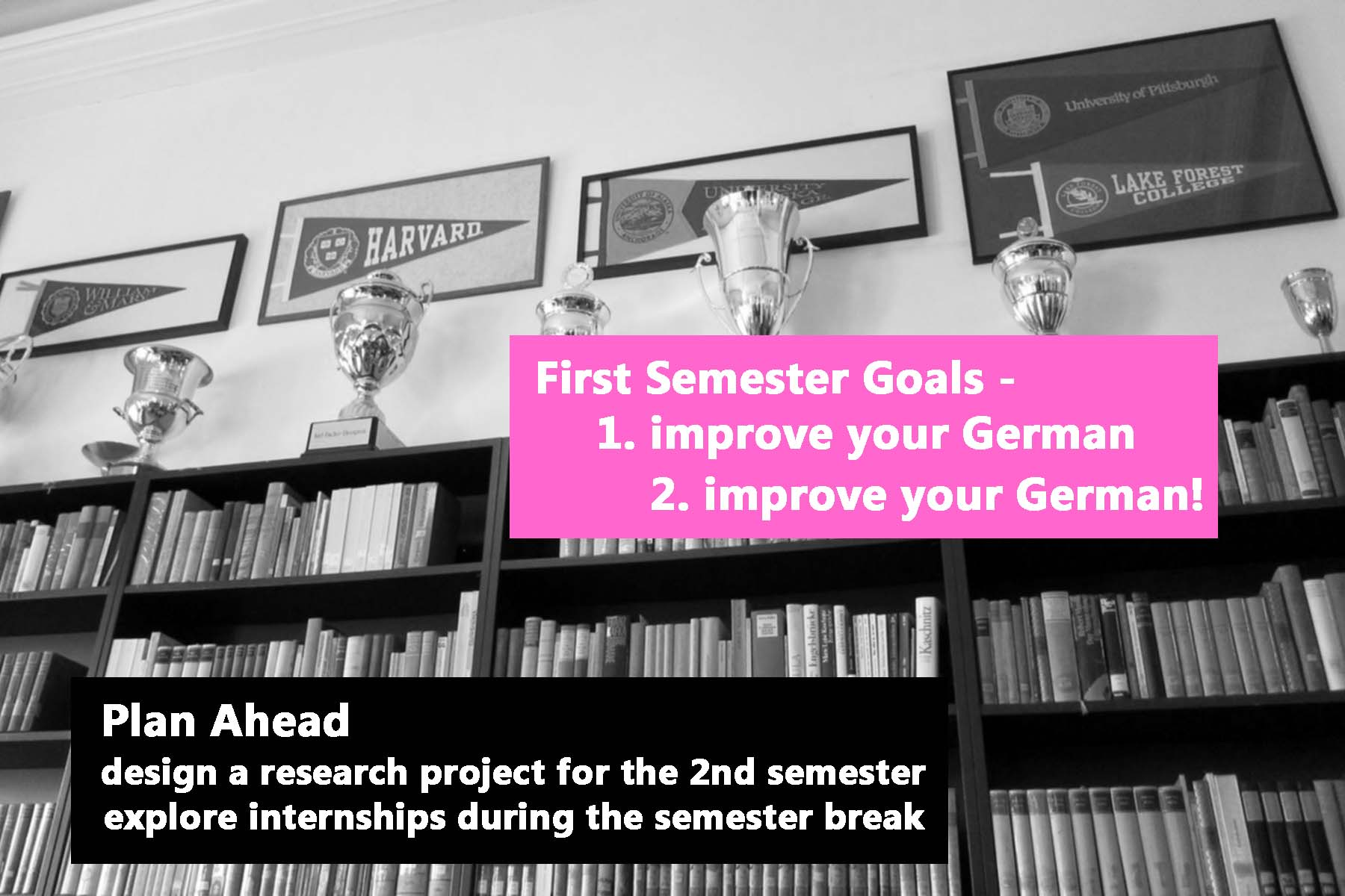 First Semester Goals: improve your German!